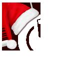 PicoBrew Logo